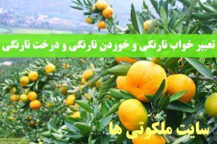 تعبیر خواب نارنگی و خوردن نارنگی و تعبیر دیدن درخت نارنگی در خواب