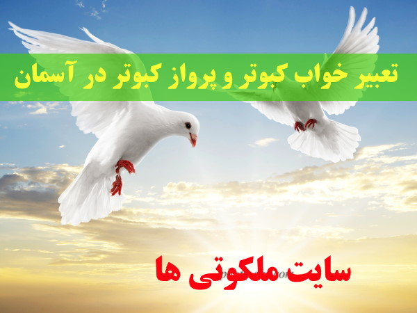 تعبیر خواب کبوتر و پرواز کبوتر در آسمان - تعبیر زدن کبوتر در آسمان با تفنگ