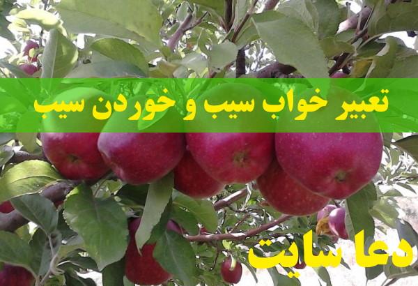تعبیر خواب سیب و خوردن سیب - دیدن درخت سیب قرمز در خواب