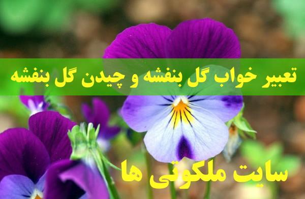 تعبیر خواب گل بنفشه - چیدن گل بنفشه در خواب نشانه چیست