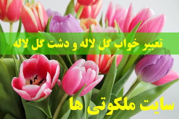 تعبیر خواب گل لاله و دشت گل لاله - تعبیر دیدن گل لاله قرمز در خواب