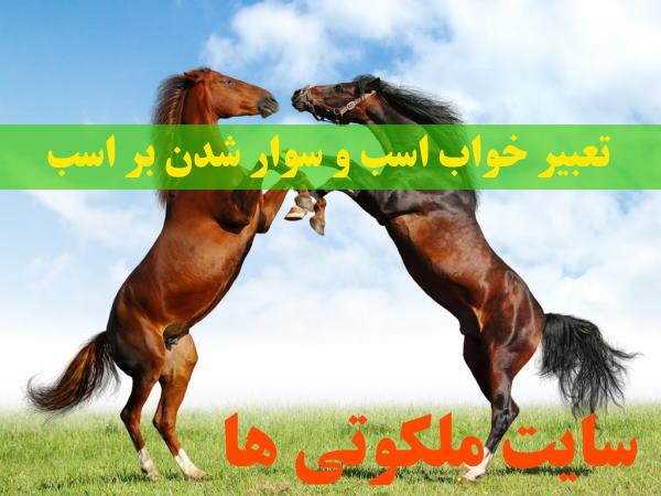 تعبیر خواب اسب و سوار شدن بر اسب - تعبیر اسب سیاه و سفید در خواب