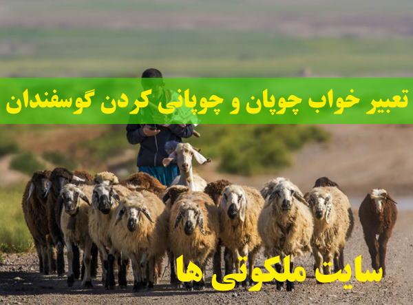 تعبیر خواب چوپان و چوپانی کردن گوسفندان - تعبیر چوپانی اسب و خر در خواب