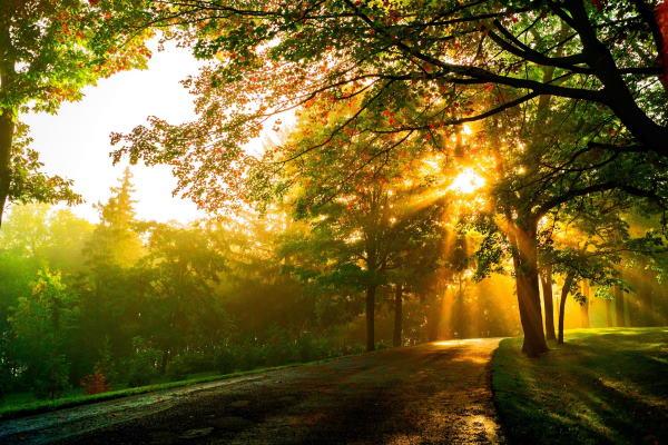 آیات مجرب برای رفع جوش و لک - دعای قرآنی رفع مشکلات پوستی
