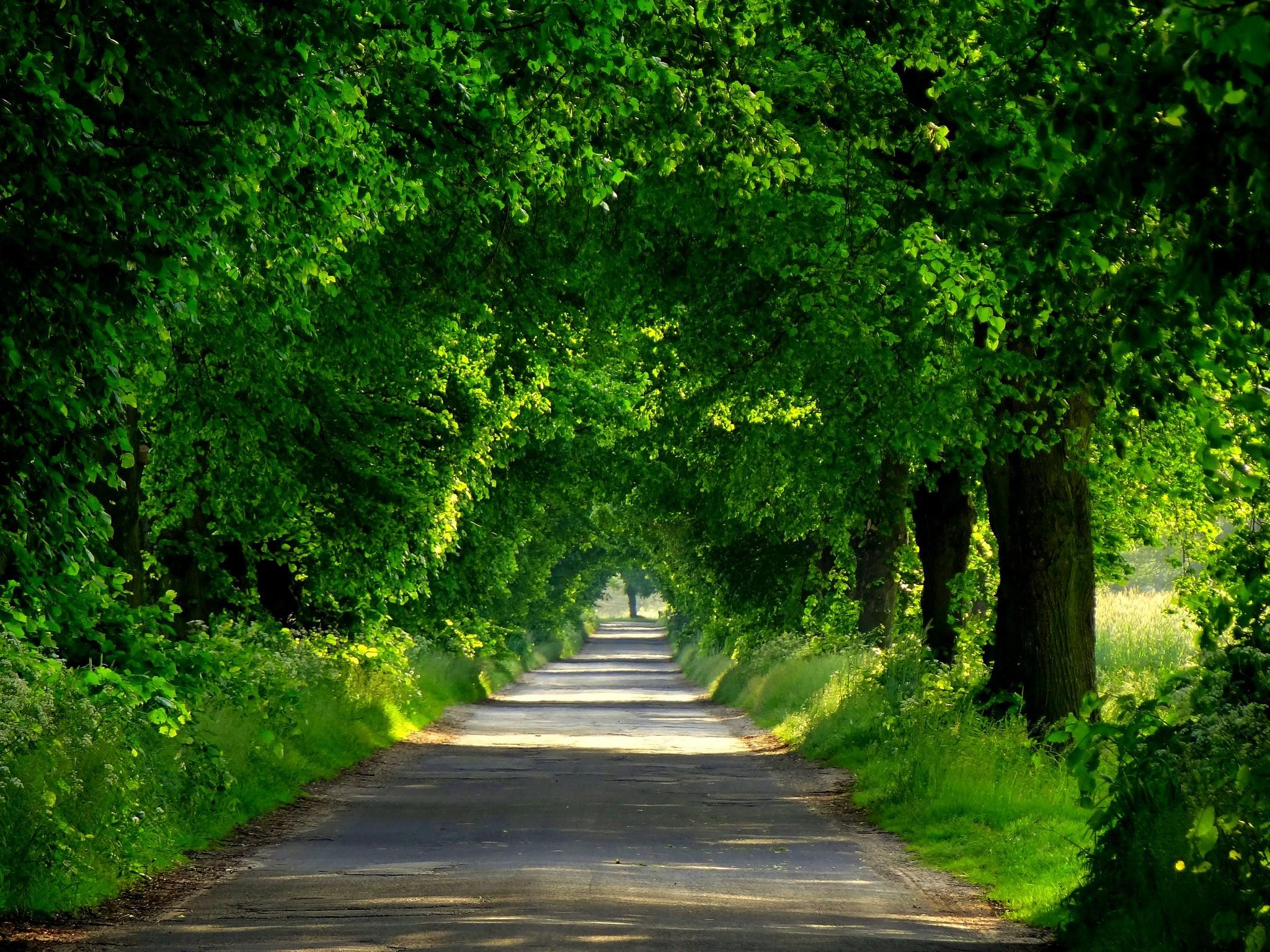 دعای جلوگیری از سفر شخص - دعای سلامتی مسافر در سفر
