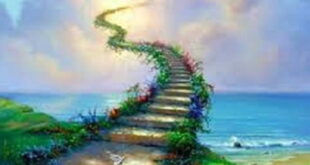 تعبیر خواب بهشت و میوه بهشتی - تعبیر وارد شدن به بهشت در خواب