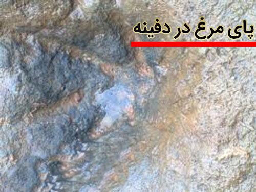 علامت و نشانه پای مرغ و پای غاز روی سنگ در گنج و دفینه یابی