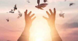 دعای مجرب طلب روزی و گشایش رزق و روزی از امام صادق (ع)