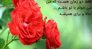 دعای عزیز شدن نزد محبوب و بیقراری معشوق و جلب مهر و محبت