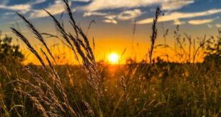 ختم دعای نور برای ایمنی از تهمت و غیبت و مذلت و بدگویی دیگران