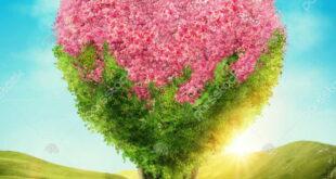 دعای محبت آویزان در باد برای افزایش محبت و جلب محبت دیگران