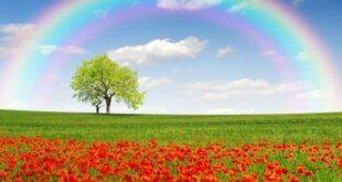 دعای مهر و محبت همگانی برای جلب مهر و محبت همگان